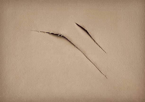Hi-Res Artist's Primed Cotton Canvas Twice Cut Vignette Grunge Texture stock photo