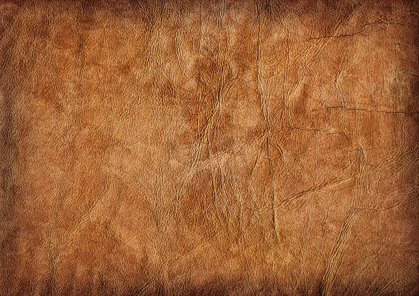 Hi-Res Brown Veal Leather Crumpled Mottled Vignette Grunge Texture stock photo