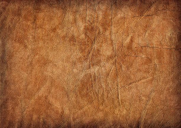 resalt-pele de vitela amarrotado ave vinheta grunge textura de - meat texture imagens e fotografias de stock