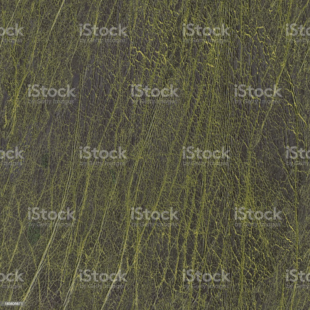 Hi-Res Old Dark Green Leather Wizened Grunge Seamless Texture Tile royalty-free stock photo