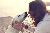istock His owner dog licks gently, loving gesture 532555676