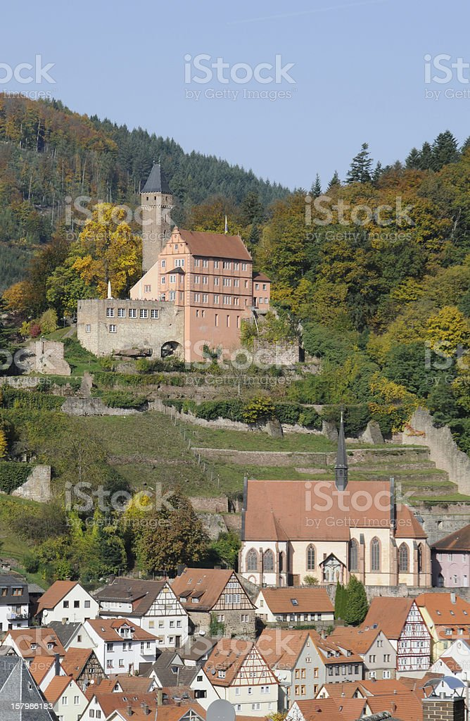 Hischhorn, a castle in Germany royalty-free stock photo