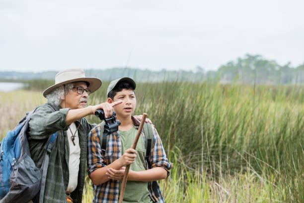 hispanic boy hiking with grandfather, bird watching - osservare gli uccelli foto e immagini stock