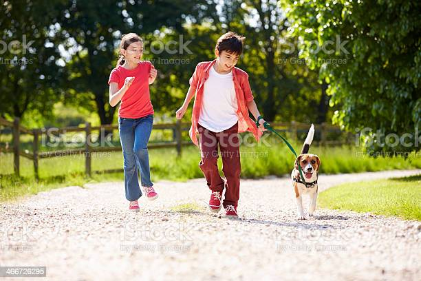 Hispanic children taking dog for walk in countryside picture id466726295?b=1&k=6&m=466726295&s=612x612&h=ridigycb5aqcvvmfvae6ocxz0er1681azzgnyc4 gv8=