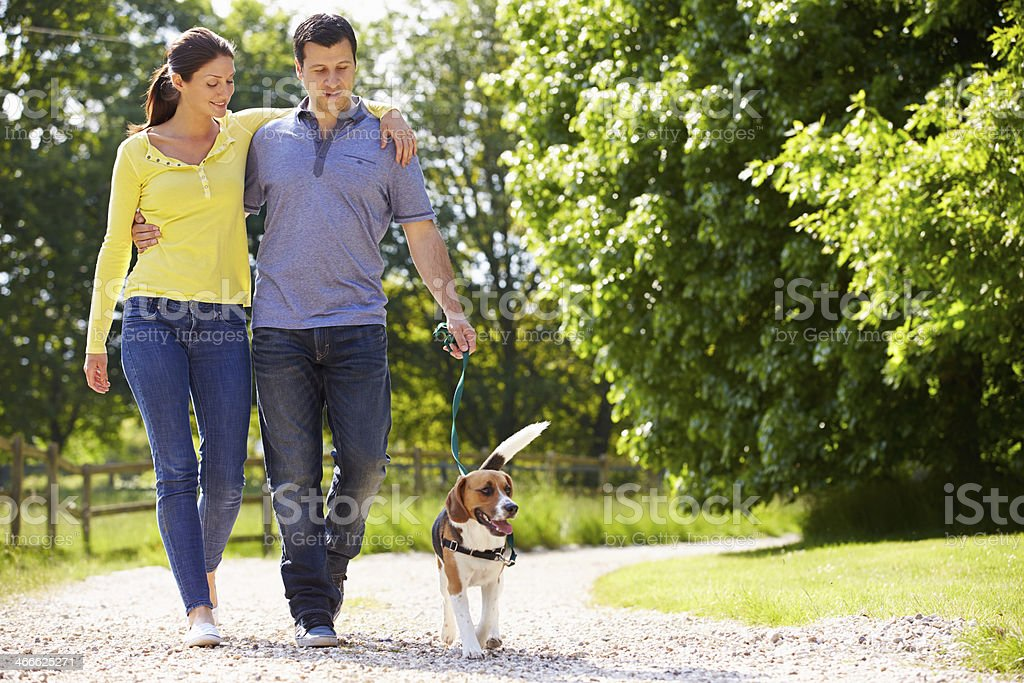 Hispanic Couple Taking Dog For Walk In Countryside stock photo