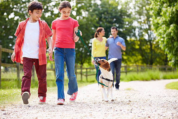 hispanic family taking dog for walk in countryside - mom spying stock photos and pictures