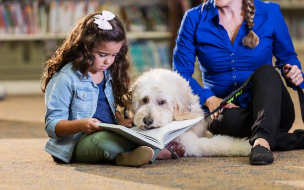 Hispanic girl reading in library with therapy dog picture id1128754124?b=1&k=6&m=1128754124&s=612x612&w=0&h=wg01rvucmrylpluprq7stczlnhohfoj lekfyfkjbou=