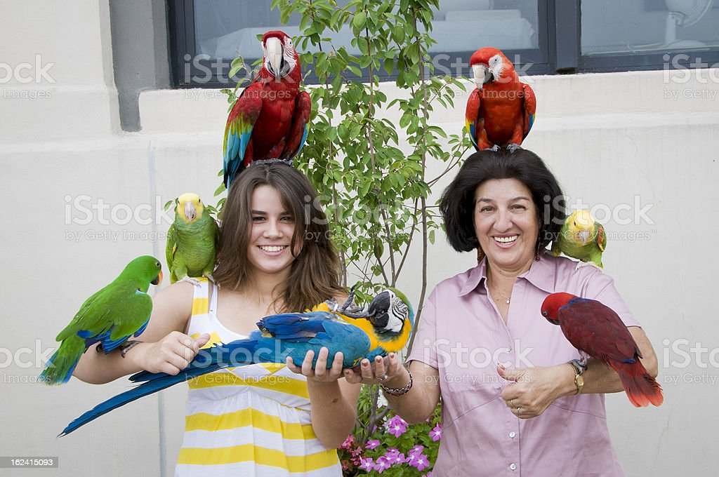 Hispanic teen girl and grandmother  holding parrots stock photo