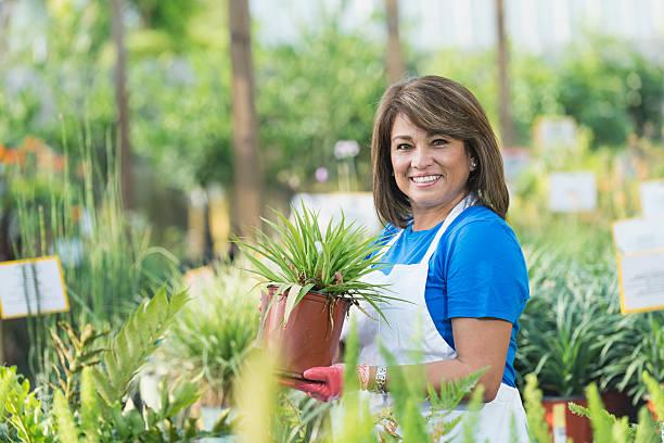 Hispanic woman working in garden center picture id539856430?b=1&k=6&m=539856430&s=612x612&w=0&h=bhodmk1deuv2ebmb9kxaj2o1i2mm2twvkxasu0dovys=