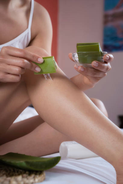 Hispanic young woman moisturizing legs with aloe vera natural gel stock photo