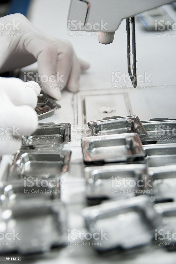 histology process : embedding stock photo