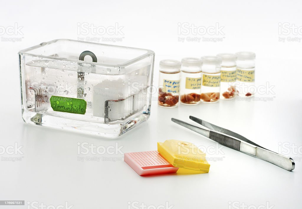 Histopathology cancer screening stock photo