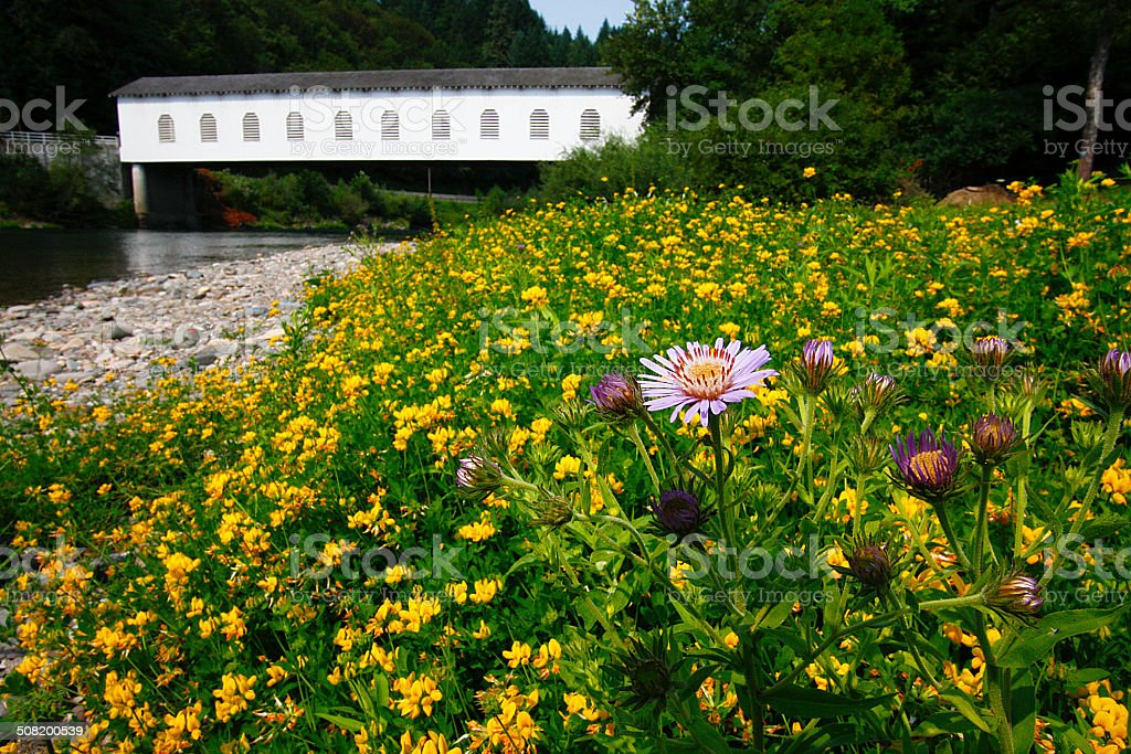 Historic Belknap Covered Bridge McKenzie River Oregon Lane County Flowers stock photo