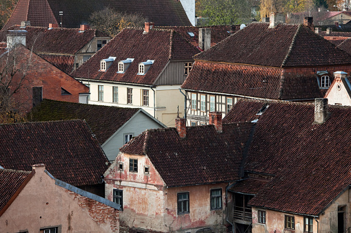 Historic buildings roofs
