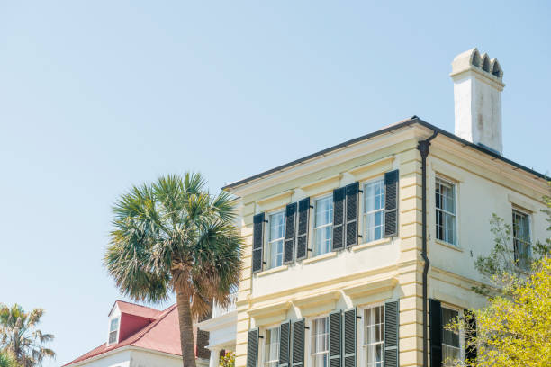 historic charleston residential home architecture with palm tree south carolina - charming stock photos and pictures