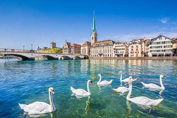 Historic city of Zurich with river Limmat, Switzerland Beautiful view of the historic city center of Zurich with famous Fraumunster Church and swans on river Limmat on a sunny day with blue sky, Canton of Zurich, Switzerland. zurich stock pictures, royalty-free photos & images