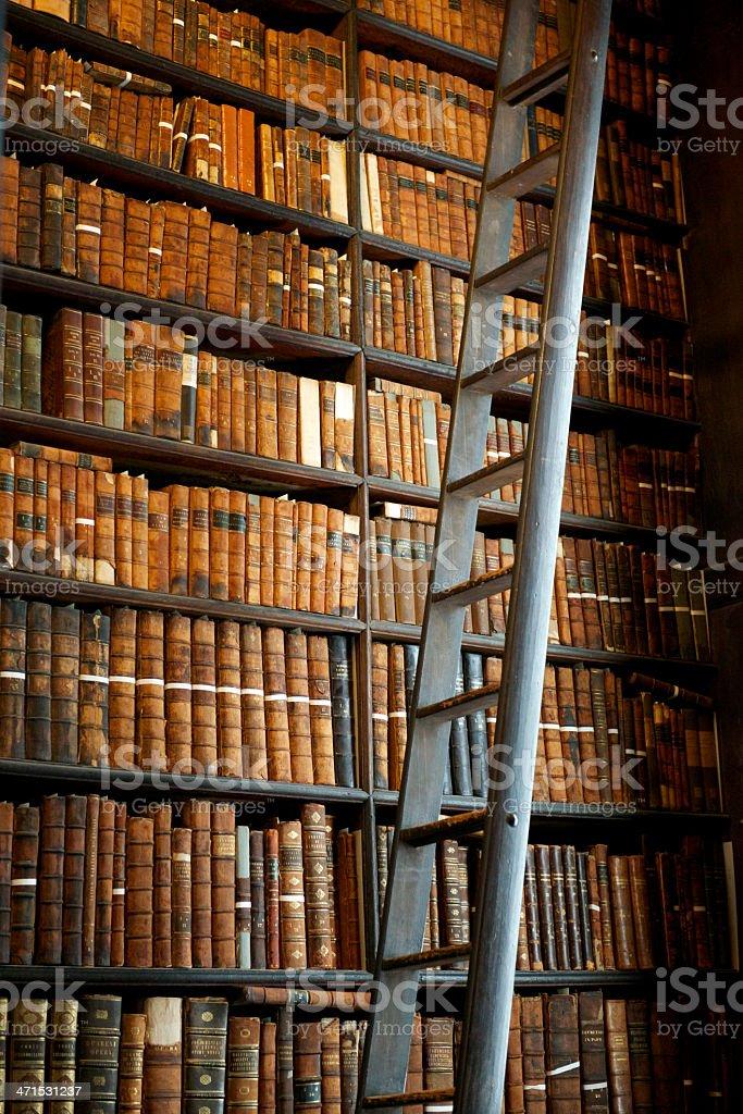 Historic Library stock photo