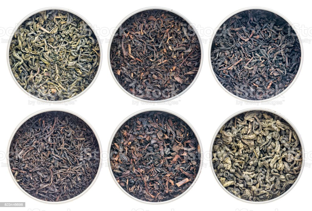 historical black and green tea collection stock photo