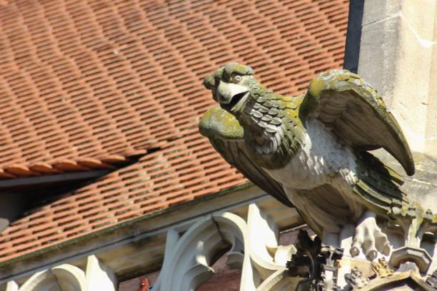 historische stadt schwäbisch gmünd katholische kirche details ornamente und dach - urbanara stock-fotos und bilder