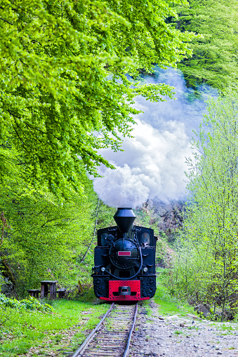 A fully functional steam engine locomotive on rails between mountans in a forest.