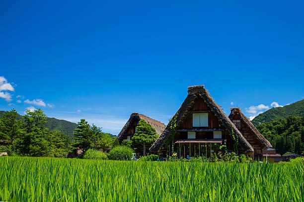 historical japanese village shirakawago in spring - strohdach stock-fotos und bilder