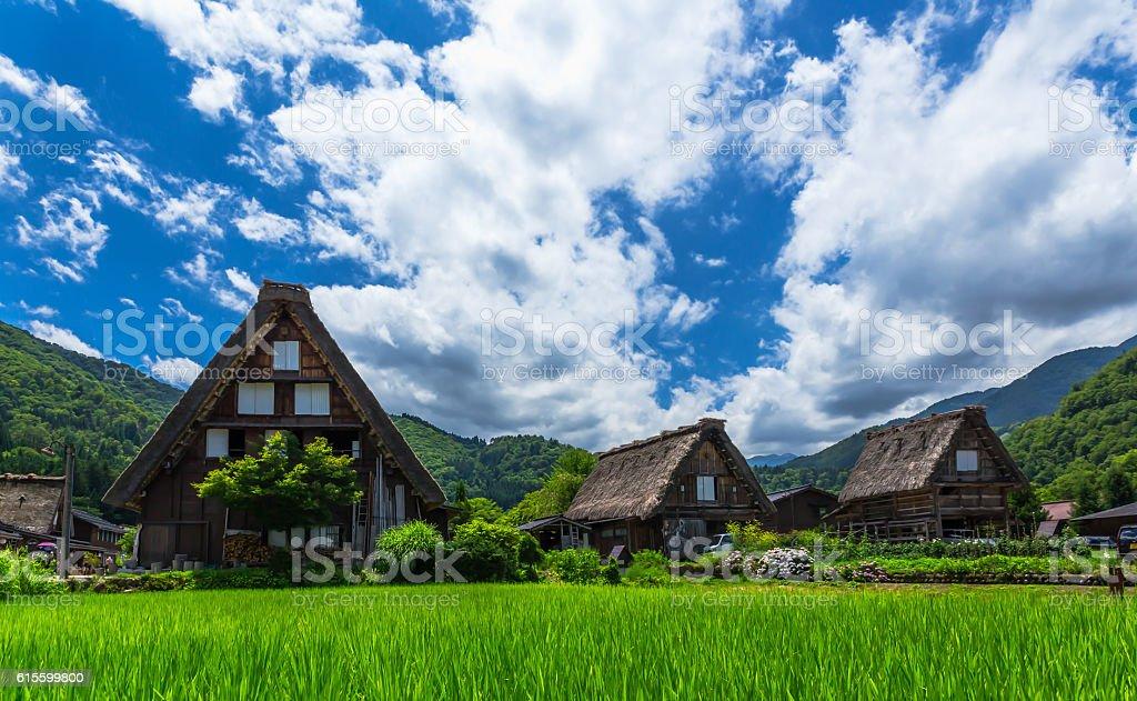 El histórico pueblo japonés Shirakawago en primavera - foto de stock