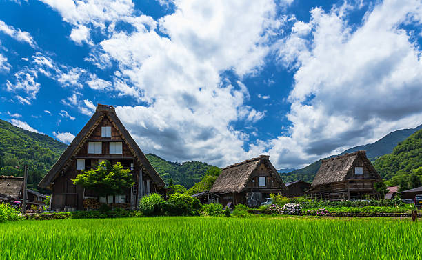 Historical Japanese village Shirakawago in spring stock photo