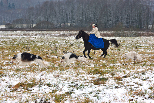Historical Reconstruction Of The Traditional Hunting With ...