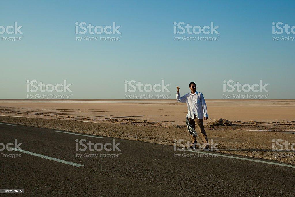 Hitch-hiking royalty-free stock photo