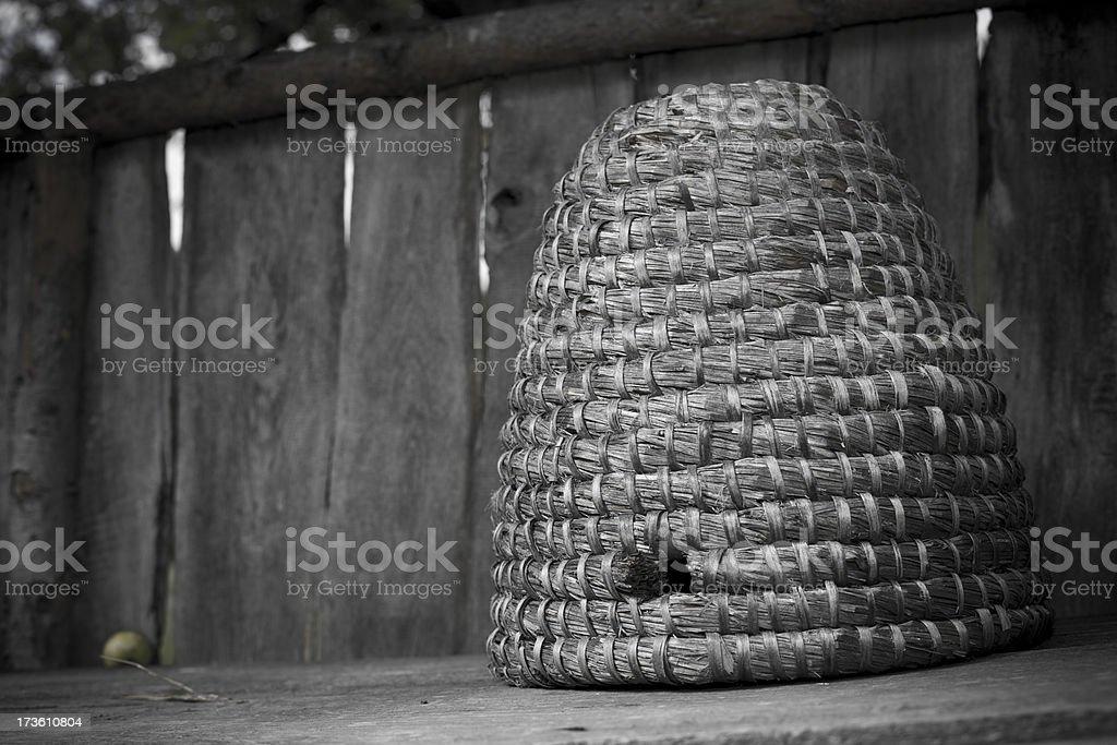 Hive royalty-free stock photo