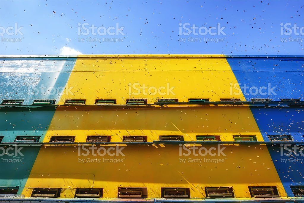 Hives in an caravan - wagon apiary with bees flying stock photo