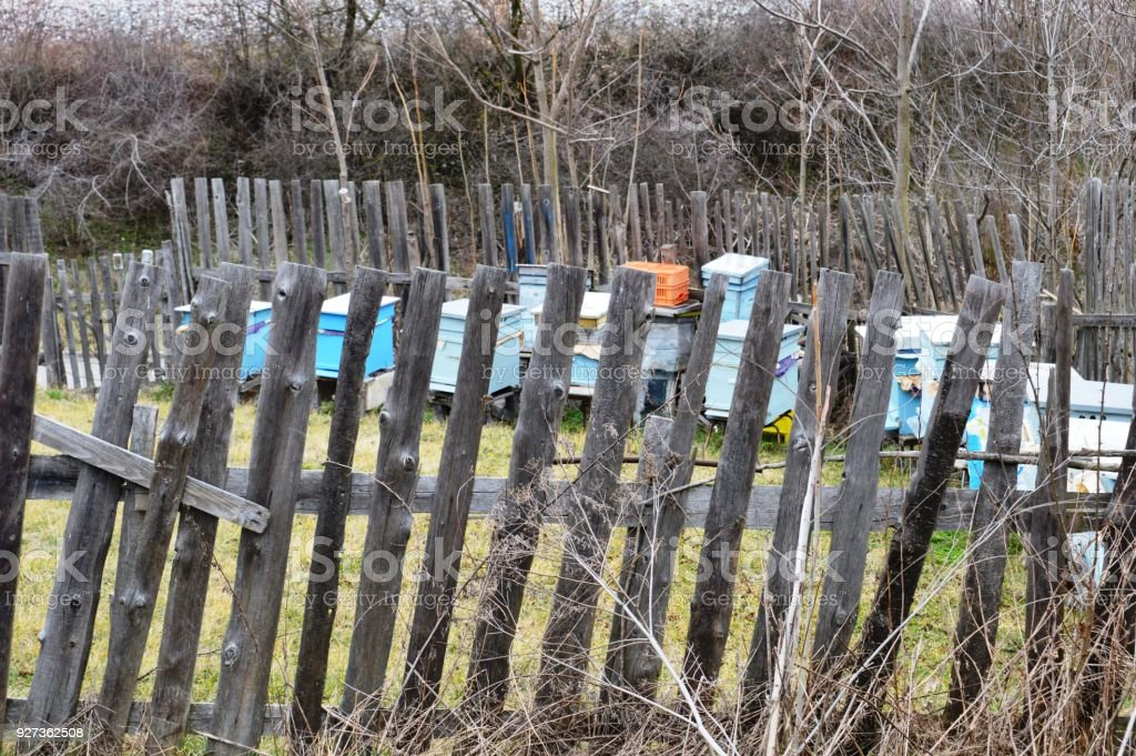 hives with bees fenced with a wooden fence - Royalty-free Beehive Stock Photo