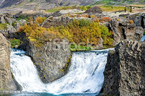 istock Hjalparfoss waterfall landscape closeup of orange tree foliage in south Iceland in autumn fall season with water falling and highway road 32 in background 1131402876