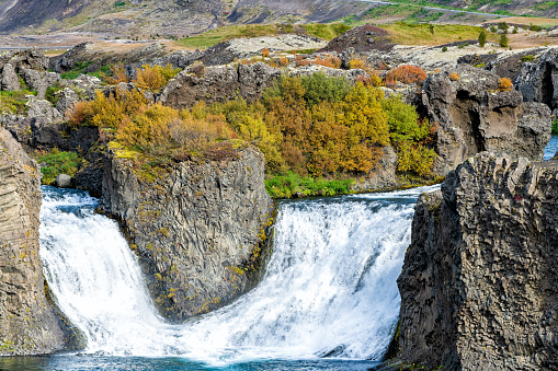 1131408581 istock photo Hjalparfoss waterfall landscape closeup of orange tree foliage in south Iceland in autumn fall season with water falling and highway road 32 in background 1131402876