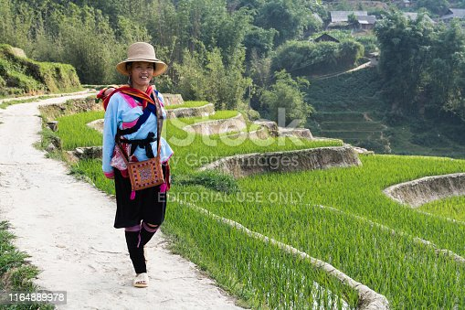 Sapa, Vietnam - May 2019: woman from Hmong ethnic group in traditional dress walking next to the rice terrace in Lao Cai province
