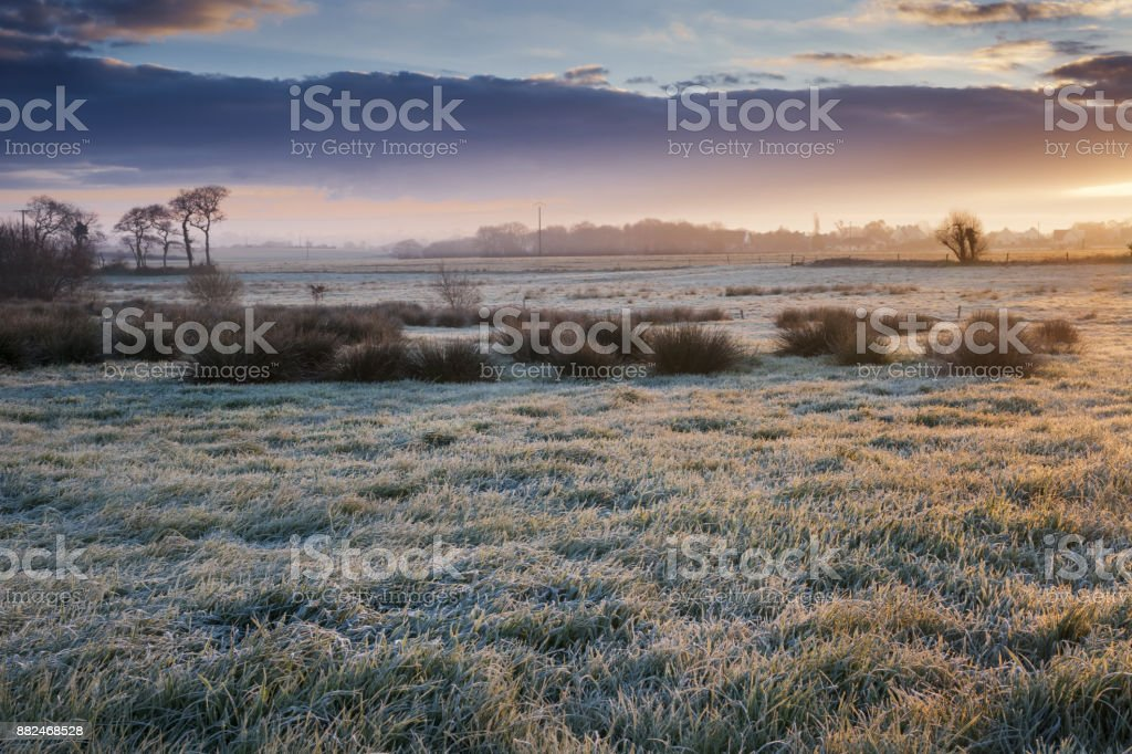 Hoary grassy slab land in sunrise on a cold day in Brittany stock photo