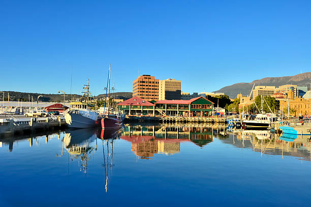 hobart marina in morning - tasmania stock pictures, royalty-free photos & images