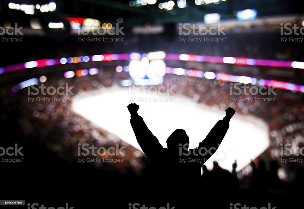 Hockey Excitement stock photo