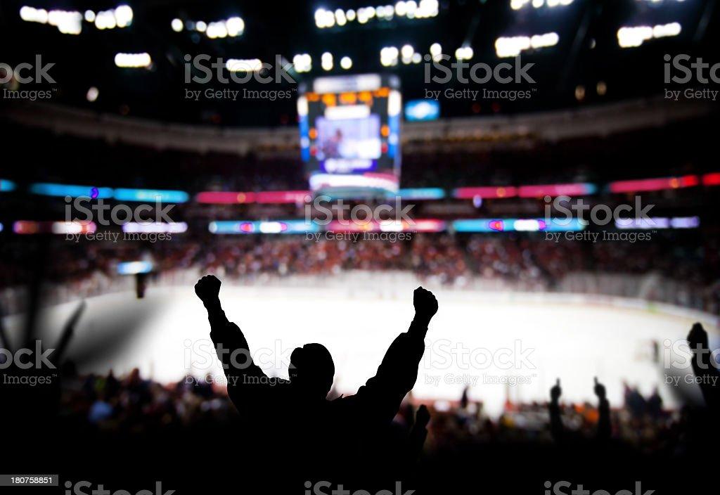Eccitazione di Hockey - Foto stock royalty-free di Ambientazione interna
