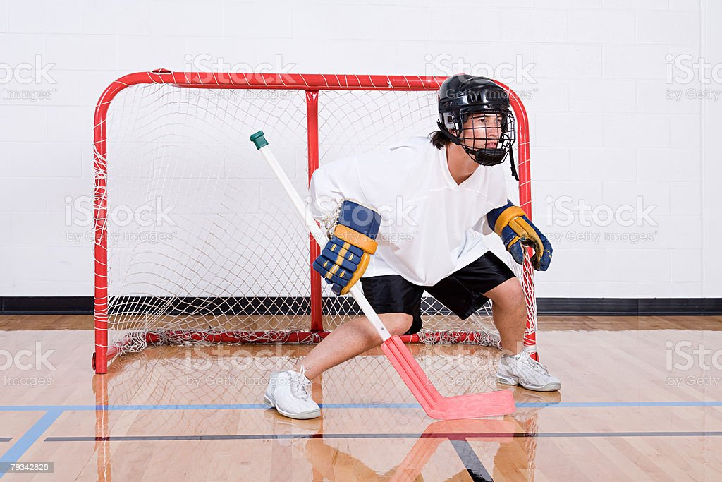 Hockey goalkeeper in goal 免版稅 stock photo