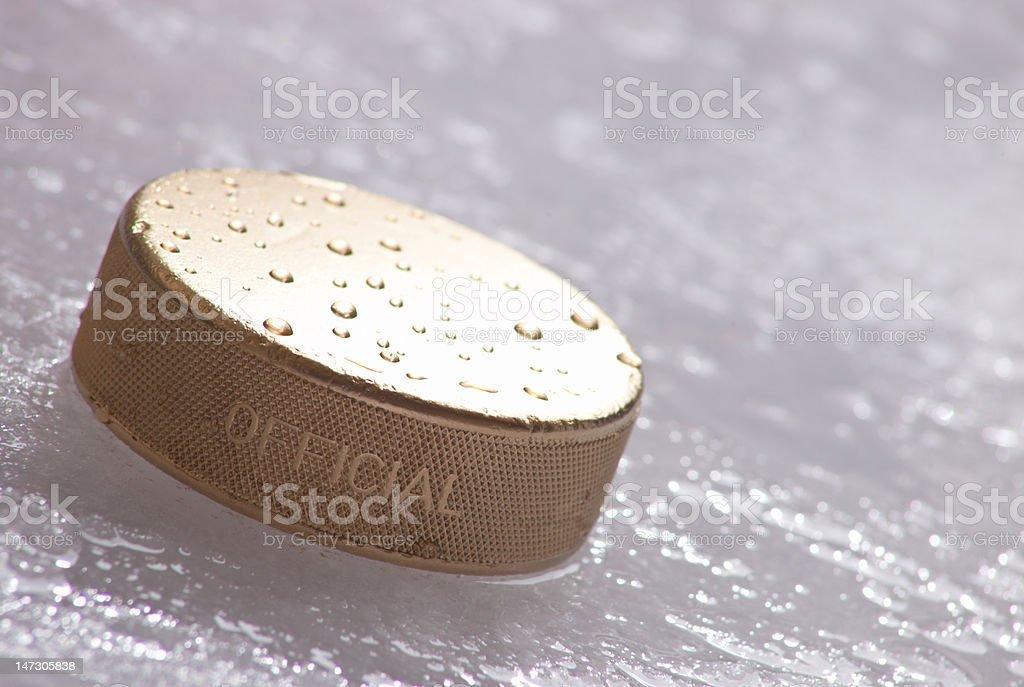 Hockey Gold royalty-free stock photo