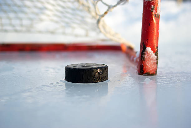 hockey net and puck - hockey puck stock photos and pictures