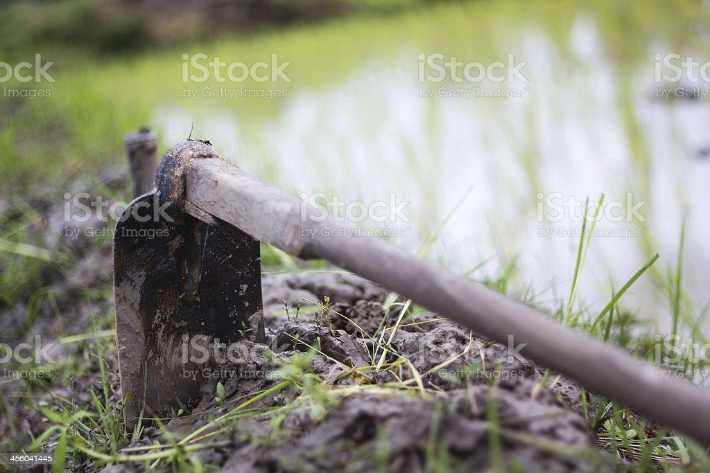 Hoe stock photo