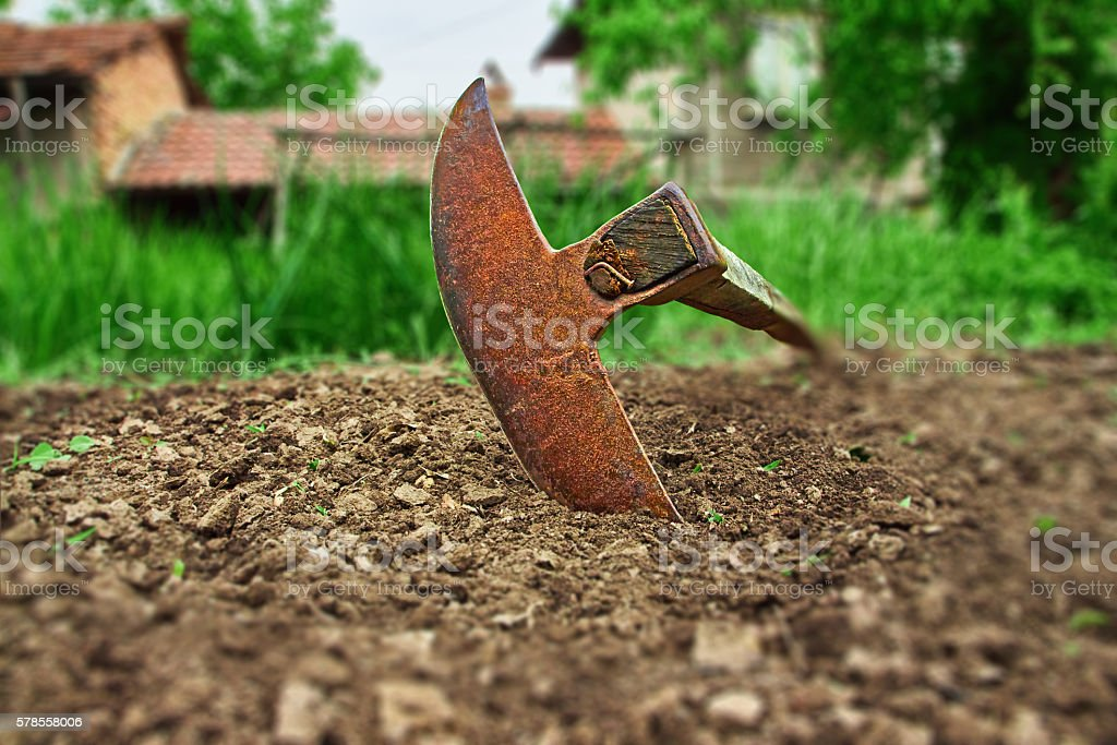 hoe royalty-free stock photo