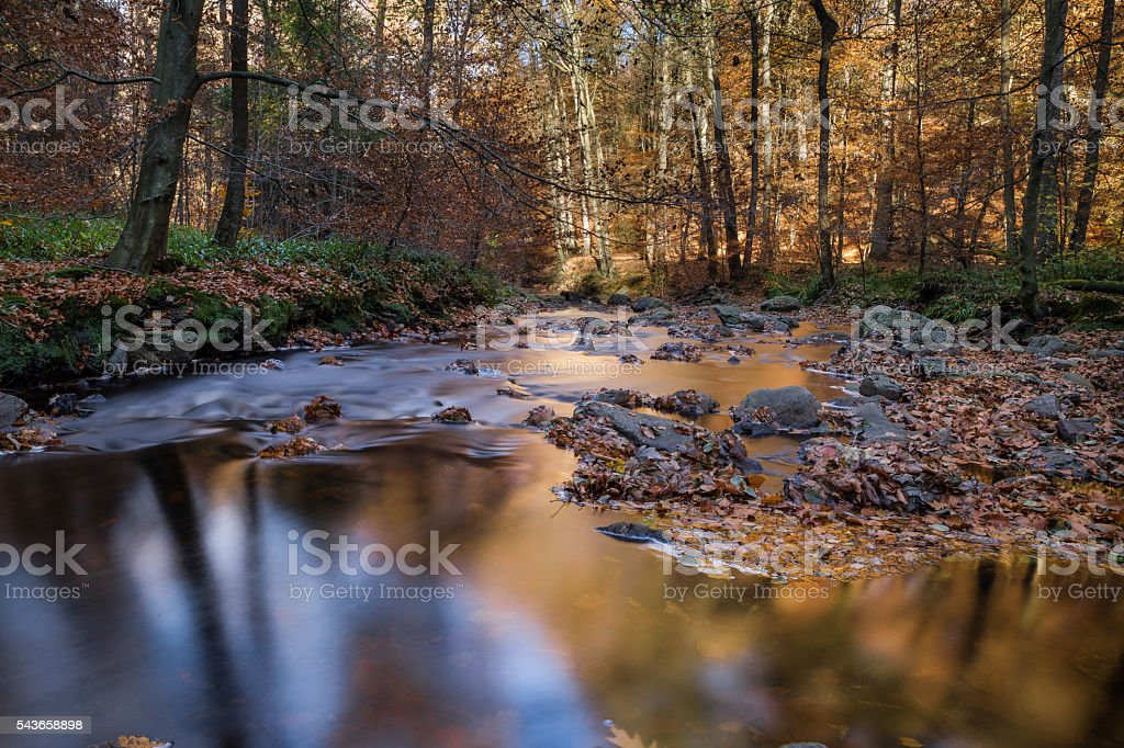 Hoegne valley  in belgium at the national park in the High Fens stock photo