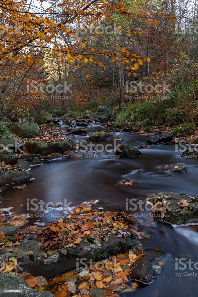 hoegne valley  in belgium at the national park in the High Fenss stock photo