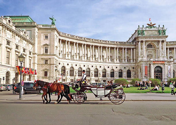 hofburg palace and square view - vienna stock photos and pictures