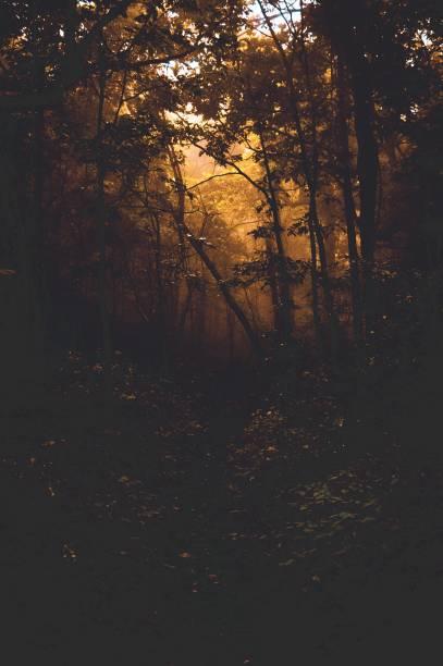 Hog Pen Gap Appalachian Trail in White County, Georgia stock photo