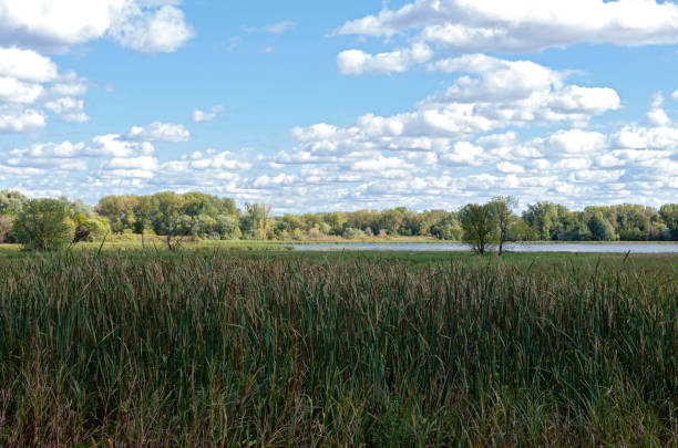 Hogback ridge ponds of bloomington refuge stock photo