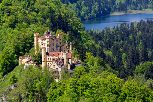 Hohenschwangau castle among greenery